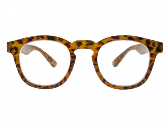 Kitty Brown Leopard Front
